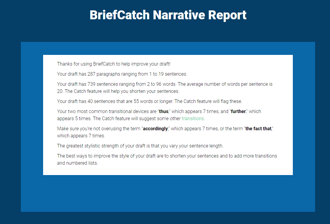 briefcatch-report-example
